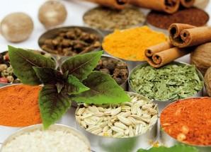 جلسه آشنایی با گیاهان دارویی در اریسمان برگزار می شود
